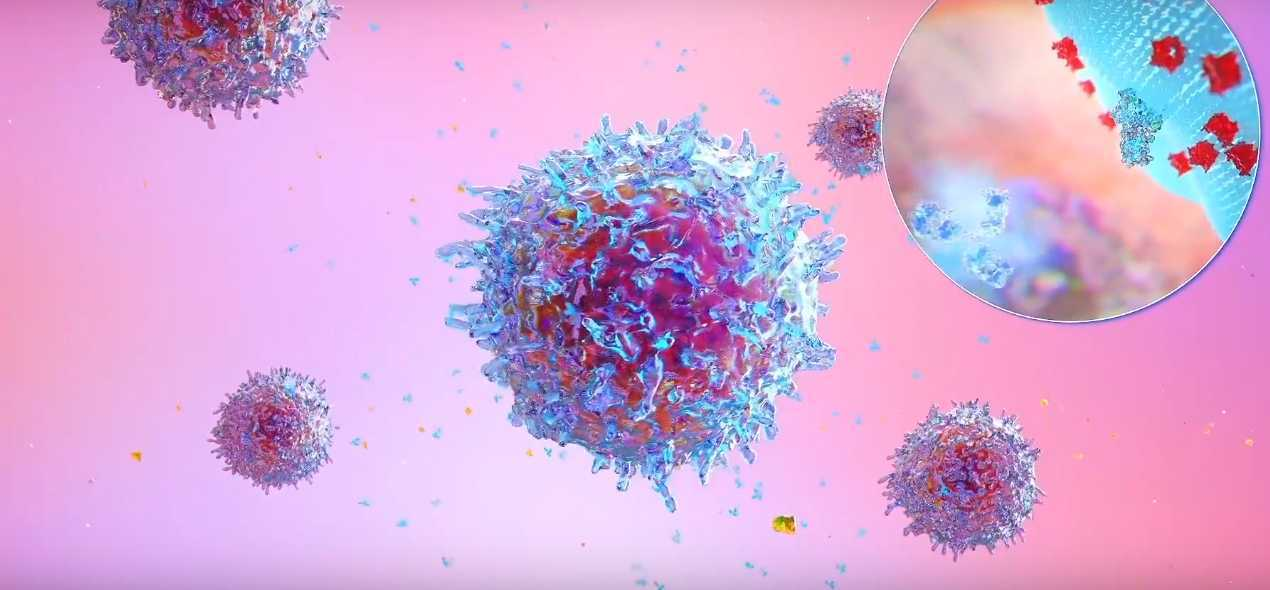 Immunotherapy. New Type of Cancer Treatment